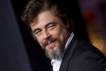 Benicio Del Toro 'Inherent Vice' Premieres in Hollywood