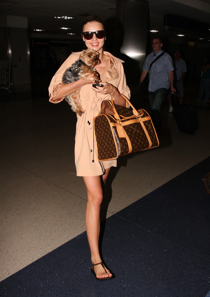 """Miranda Kerr looks like she stepped off a runway when she arrived to Los Angeles with her puppy """"Frankie"""" under her arm."""