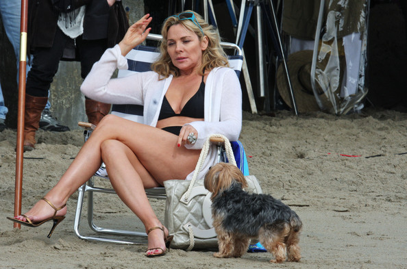 kim cattrall filmography
