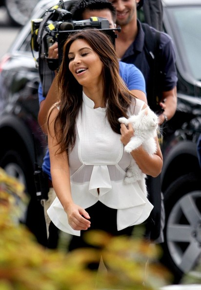 Kim Kardashian and Mercy Hit Fluffy Teacup Kittens