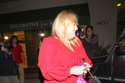 Rebel Wilson Photos Photo