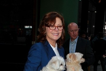 Susan Sarandon Susan Sarandon Visits 'GMA' With Her Dogs