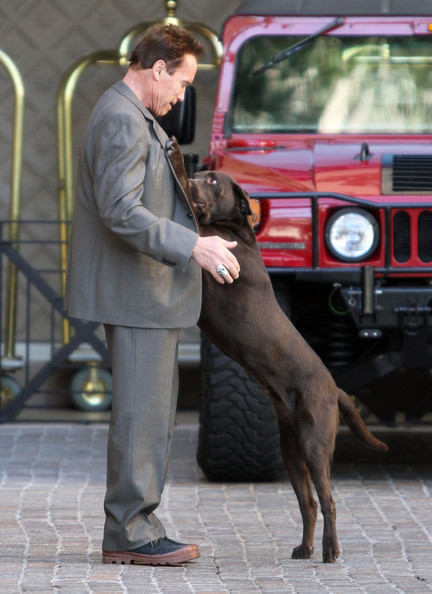 Photo of Arnold Schwarzenegger & his  Dog Chris