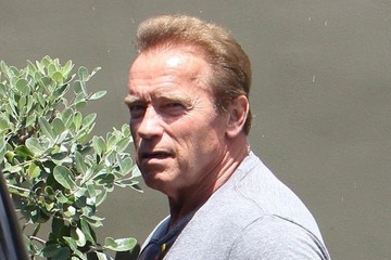 Arnold Schwarzenegger Arnold Schwarzenegger Lunches With Friends