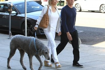 David Steinberg David Steinberg Walks His Dog With His Wife in Beverly Hills