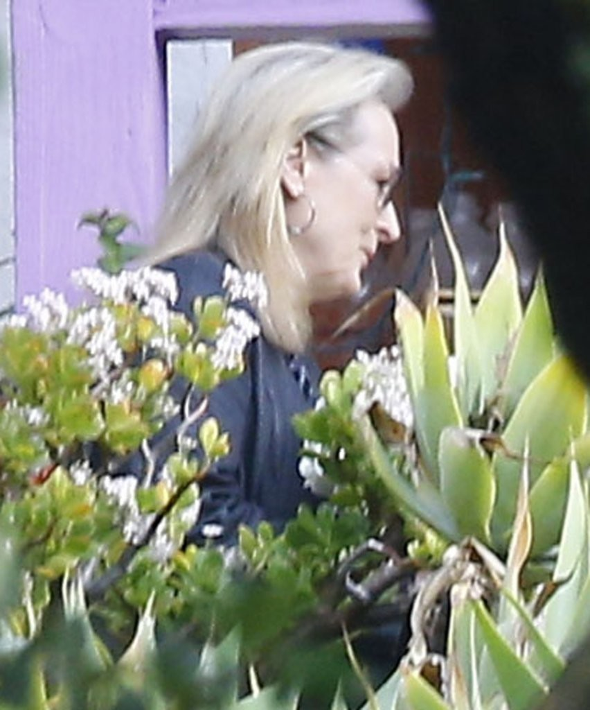 Meryl streep photos photos flowers are delivered to for Carrie fisher home