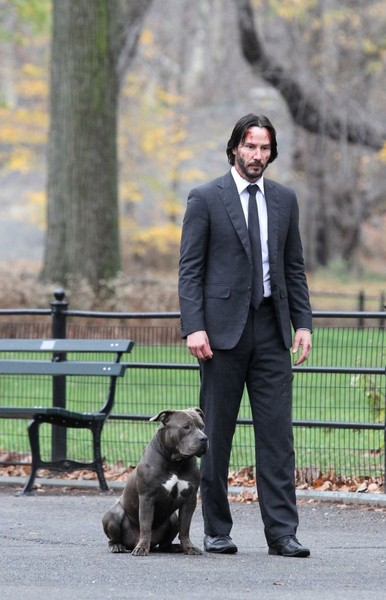On the Set of 'John Wick 2'