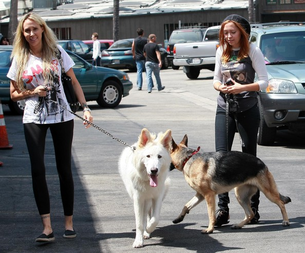 Leticia Cyrus Tish Cyrus and daughter Brandi Cyrus out walking their dogs in Toluca Lake, CA.