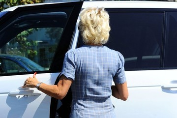 Pamela Anderson Pamela Anderson Lunches With A Friend In Malibu