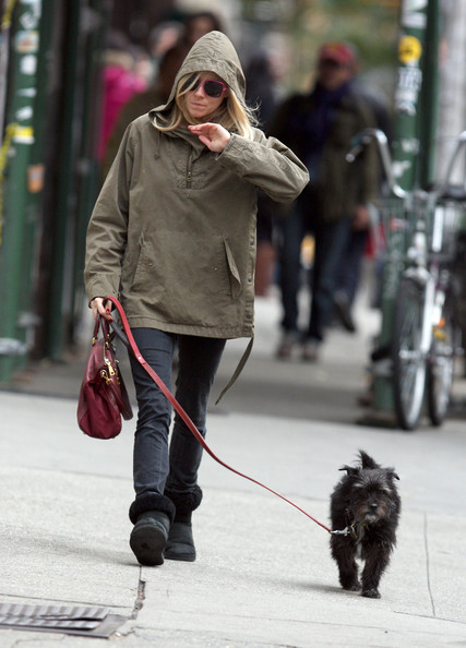 Sienna Miller Sienna Miller and her dog Bess go for a walk in New York City today.