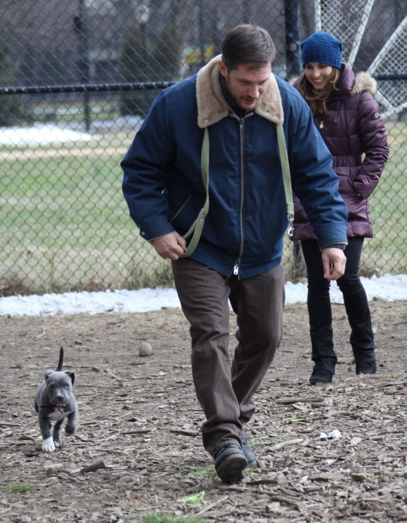 http://www2.pictures.zimbio.com/fp/Tom+Hardy+Stars+Set+Animal+Rescue+89Eh8y0hf1bx.jpg