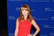 Jane Seymour attends the 101st Annual White House Correspondents' Association Dinner at the Washington Hilton on April 25, 2015 in Washington, DC.
