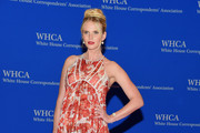 Anne V - The Best Looks from the White House Correspondents' Dinner 2015