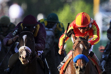 Lookin at Lucky 135th Running of the Preakness Stakes