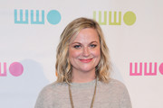 Amy Poehler attends the 14th Annual Worldwide Orphans Gala  at Cipriani Wall Street on November 05, 2018 in New York City.