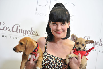 """Pauly Perrette 2nd Annual """"Patterns For Paws"""""""