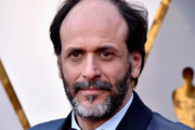 Luca Guadagnino attends the 90th Annual Academy Awards at Hollywood & Highland Center on March 4, 2018 in Hollywood, California.