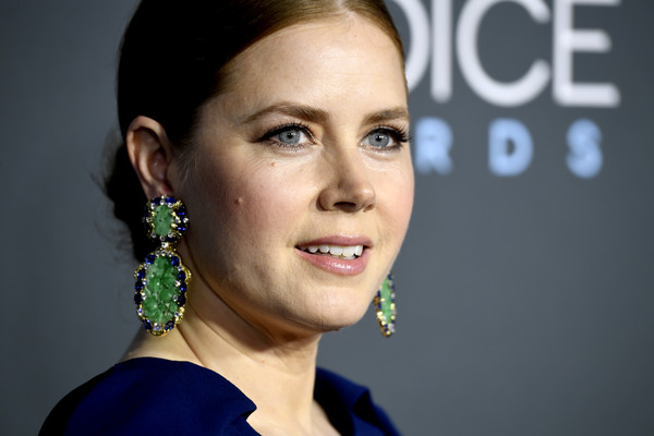The 24th Annual Critics' Choice Awards - Arrivals [hair,face,eyebrow,facial expression,nose,hairstyle,cheek,beauty,skin,chin,arrivals,amy adams,critics choice awards,santa monica,california,barker hangar]