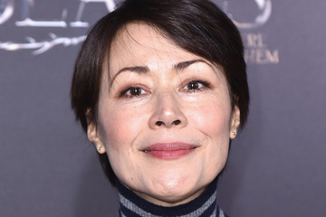 Ann Curry 'Fantastic Beasts and Where to Find Them' World Premiere