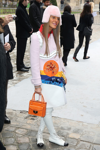 Anna dello Russo Anna Dello Russo attends the Christian Dior show as part of Paris Fashion Week Haute Couture Spring/Summer 2014 on January 20, 2014 in Paris, France.