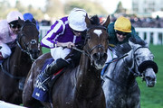 Ryan Moore riding Magical (white cap) win The Qipco British Champions Fillies & Mares Stakes at Ascot Racecourse on October 20, 2018 in Ascot, United Kingdom.
