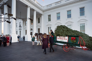 Barron Trump First Lady Melania Trump Receives White House Christmas Tree