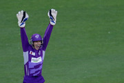 Wicketkeeper Tim Paine of the Hurricanes appeals successfully as Luke Wright of the Stars is dismissed LBW during the Big Bash League Semi Final match between the Melbourne Stars and the Hobart Hurricanes at Melbourne Cricket Ground on February 4, 2014 in Melbourne, Australia.