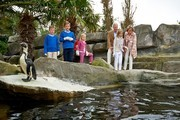 Prince Emmanuel, Princess Eleonore, Prince Gabriel, King Philippe, Queen Mathilde and Princess Elisabeth of Belgium visit Sealife on July 12, 2014 in Blankenberge, Belgium.