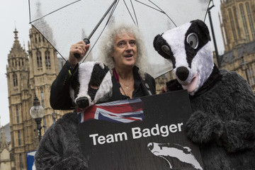 Brian May Celebrities Protest At Planned Badger Cull