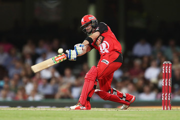 Callum Ferguson Big Bash League - Sixers v Renegades