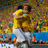 Fred David Luiz Picture