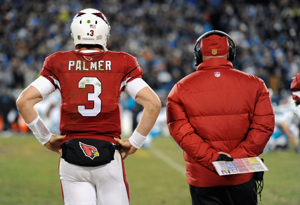 NFC Championship - Arizona Cardinals v Carolina Panthers []