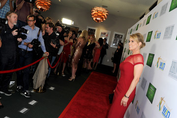 Cheryl Hines 17th Annual Women's Image Awards - Red Carpet