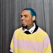 Chris Brown 62nd Annual GRAMMY Awards – Red Carpet