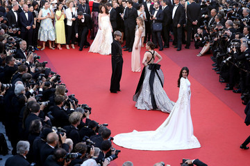 Chris Lee 'From the Land and the Moon (Mal De Pierres' - Red Carpet Arrivals - The 69th Annual Cannes Film Festival
