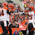 Andy Dalton Giovani Bernard Photos - Andy Dalton #14 of the Cincinnati Bengals celebrates a first quarter touchdown with Giovani Bernard #25 while playing the Cleveland Browns at FirstEnergy Stadium on December 6, 2015 in Cleveland, Ohio. - Cincinnati Bengals v Cleveland Browns