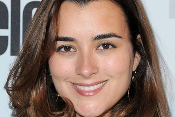 ncis contract 2014 online newspape 2014 01 18 cote de
