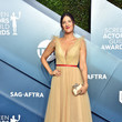 D'Arcy Carden 26th Annual Screen ActorsGuild Awards - Arrivals