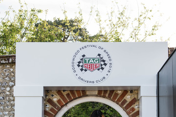 Daisy Lowe Daisy Lowe With TAG Heuer At The Goodwood Festival of Speed