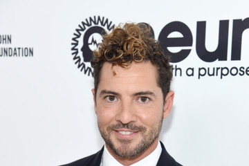 David Bisbal 25th Annual Elton John AIDS Foundation's Oscar Viewing Party - Red Carpet