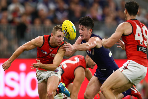 Image result for afl fremantle essendon