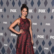 Dilshad Vadsaria 2016 Winter TCA Tour - FOX All-Star Party - Arrivals