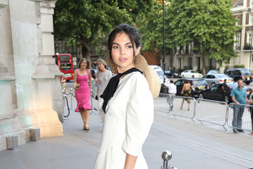 Doina Ciobanu V&A Summer Party - Arrivals
