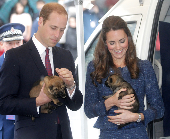 Prince William, Duke of Cambridge and Catherine, Duchess of Cambridge hold puppies during a visit to the Royal New Zealand Police College on April 16, 2014 in Wellington, New Zealand. The Duke and Duchess of Cambridge are on a three-week tour of Australia and New Zealand, the first official trip overseas with their son, Prince George of Cambridge.