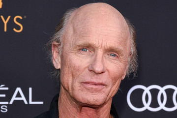 Ed Harris Television Academy Honors Emmy Nominated Performers - Arrivals