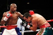 (L-R) Floyd Mayweather Jr. throws a left as Juan Manuel Marquez of Mexico ducks during their welterweight bout at the MGM Grand Garden Arena September 19, 2009 in Las Vegas, Nevada.