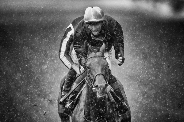 Royal Ascot 2019 - Racing, Day 2 [image,black-and-white,monochrome,monochrome photography,horse,photography,stock photography,racing,motocross,style,motorcycle racing,frankie dettori,filters,prince of waless stakes,ascot 2019 - racing,ascot,crystal ocean,ascot racecourse,england]