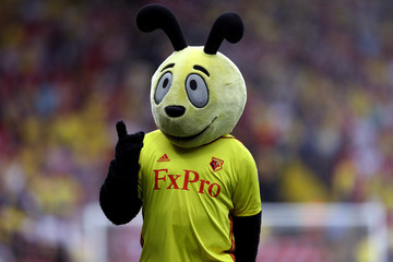 Harry the Hornet Watford v Crystal Palace - Premier League