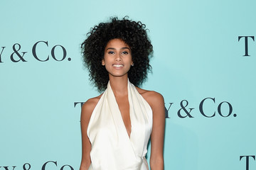 Imaan Hammam Tiffany & Co. 2017 Blue Book Collection Gala - Red Carpet
