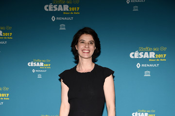 Irene Jacob 'Les Nuits en Or 2017' Dinner Gala - Photocall At Unesco
